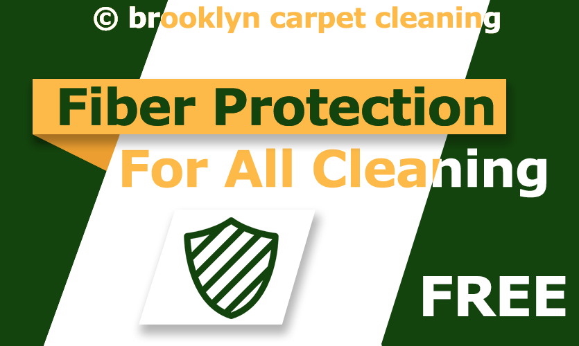Free fiber protection for all cleaning services