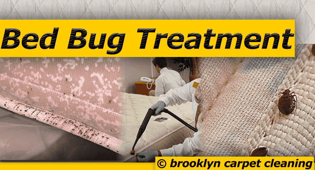Bed Bug Treatment - Vinegar hill 11201